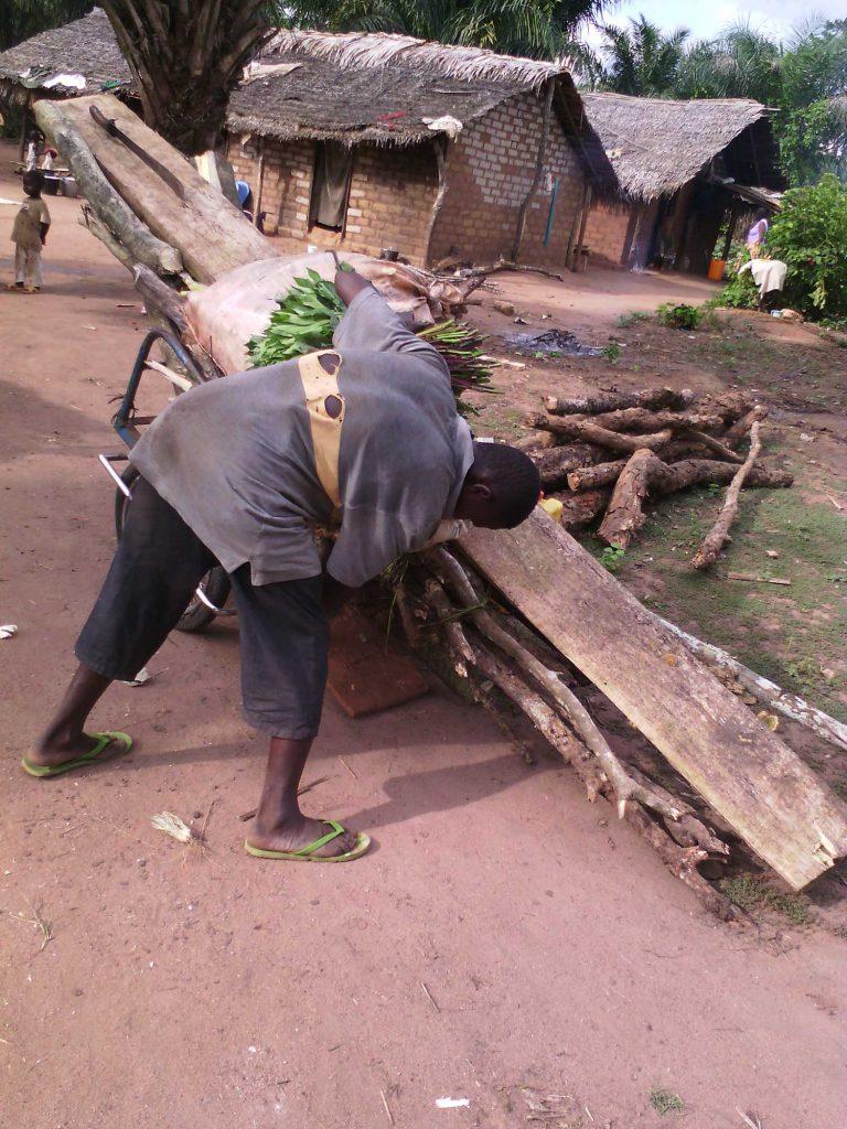 Banguissois finissant de charger son bois sur sa charette.