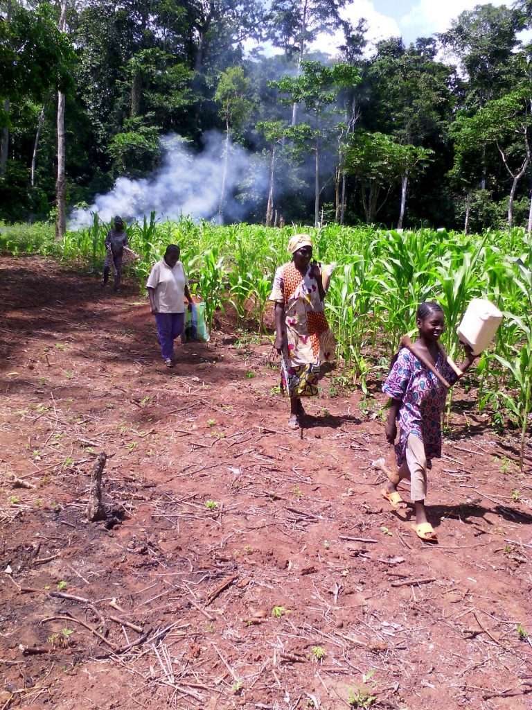 Cultiatrices de l'association Soboy à Bangui sur le chemin du retour à leurs habitations.