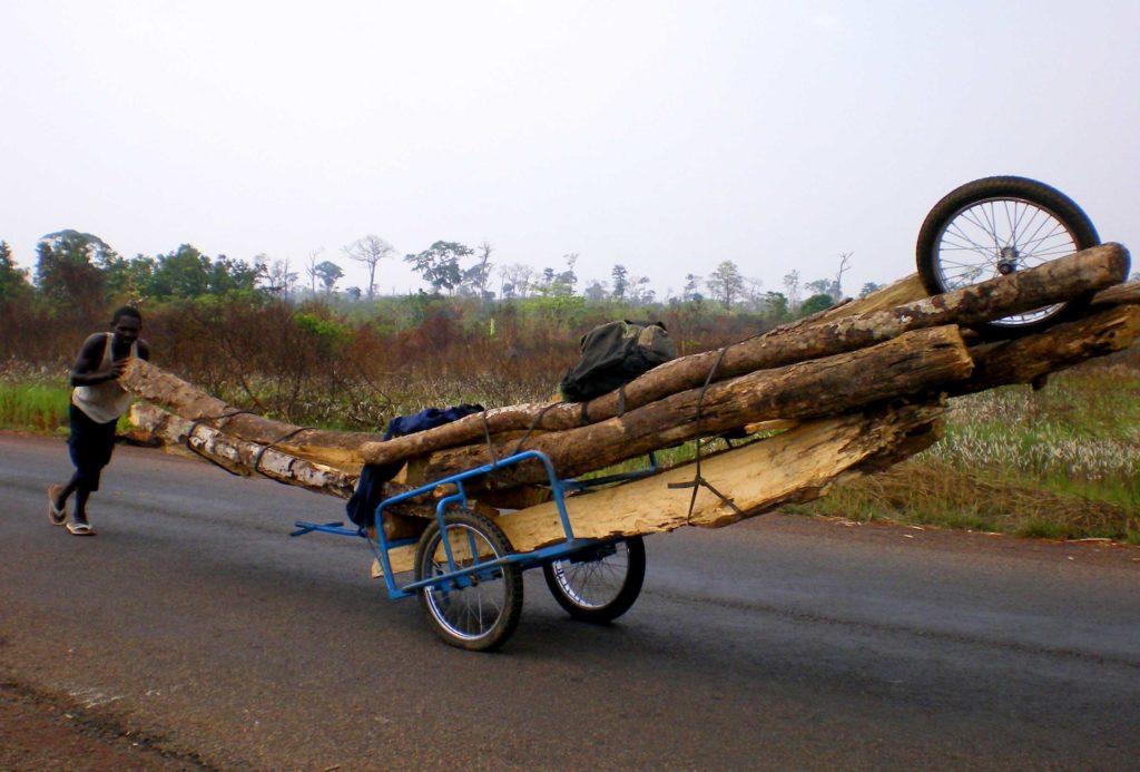 Banguissois, membre de Soboyo, transporte d'immense tronce de bois sur une simple petite remoroque de vélo